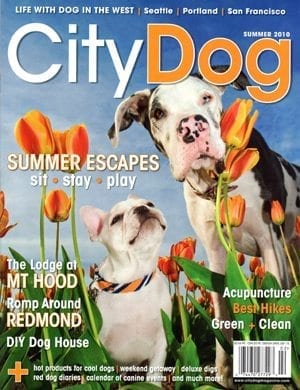CityDog_Summer2010_cover