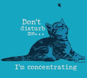 DontDisturb_Cat_EF_HeatheredTurq
