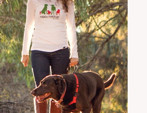 Dog is Good –  7 Gift Ideas for Dog Lovers