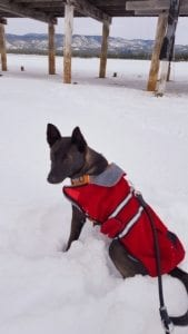 kona-first-snow_small