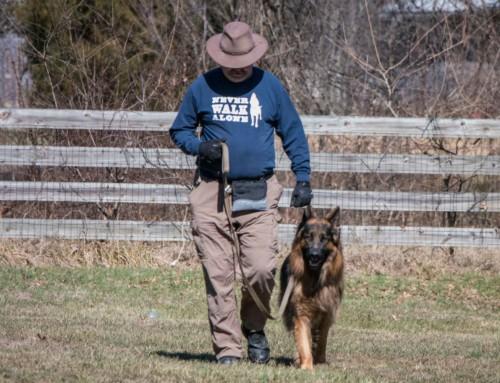 Dog is My…Coach