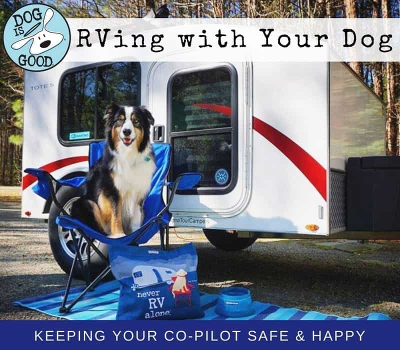 rving-with-dog