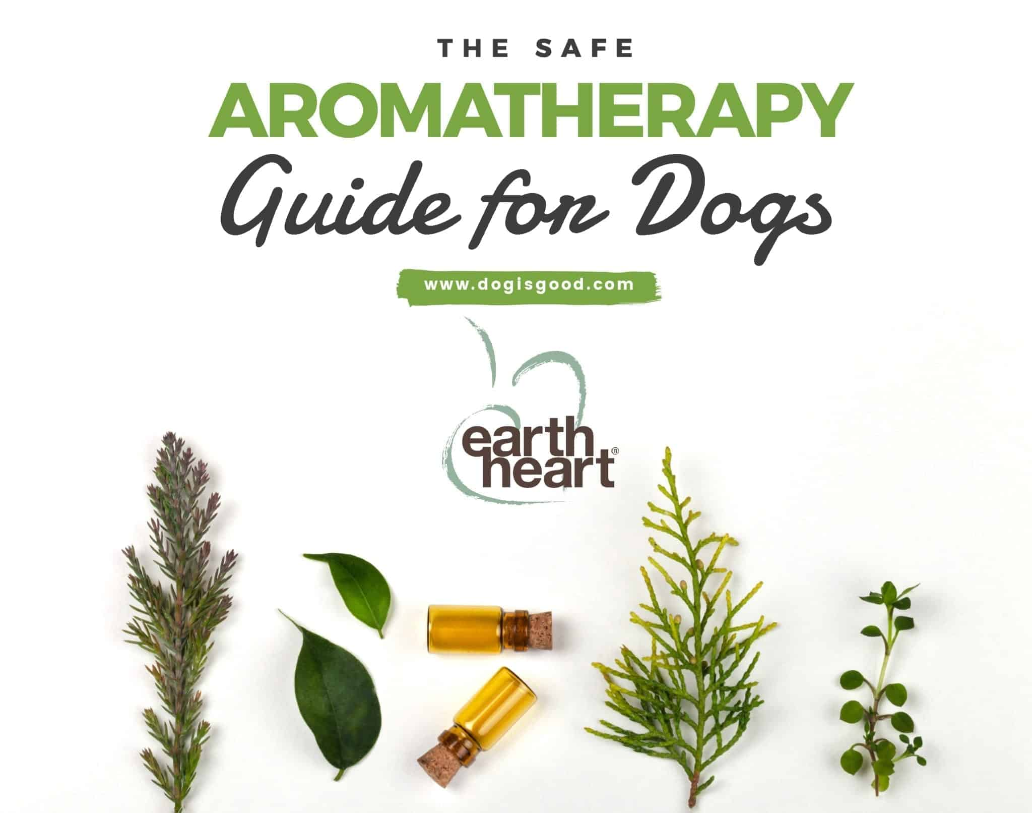 aromatherapy for dogs – fb