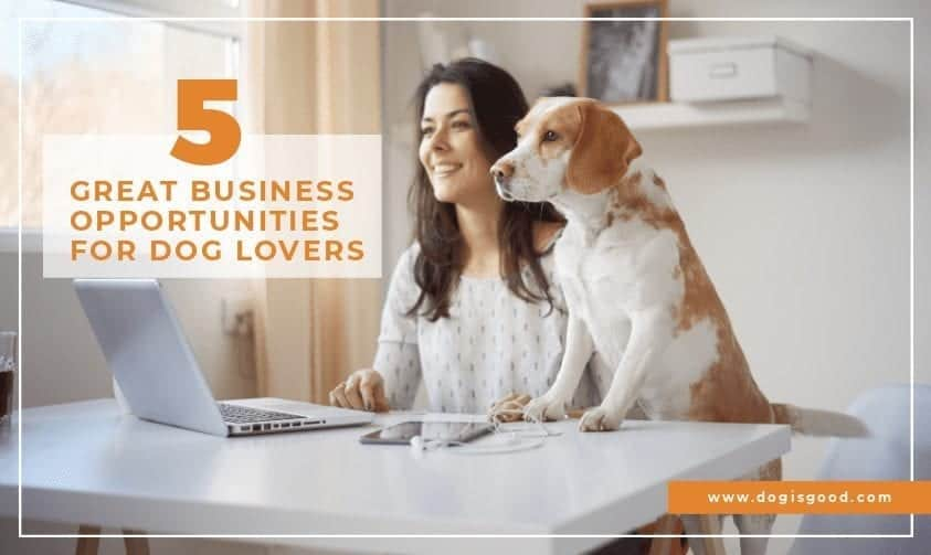 5 Business Opportunities for Dog Lovers