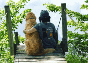 never camp alone with dog