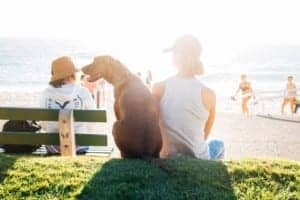 dog lover lifestyle