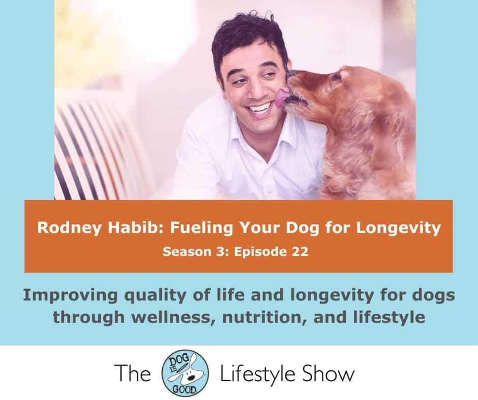 DIG Lifestyle Show- Rodney Habib (2)