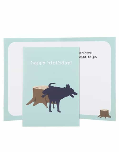 Greeting Card: Birthday, Go Where You want
