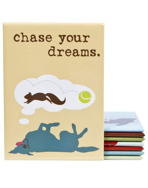 Magnet: Chase Your Dreams