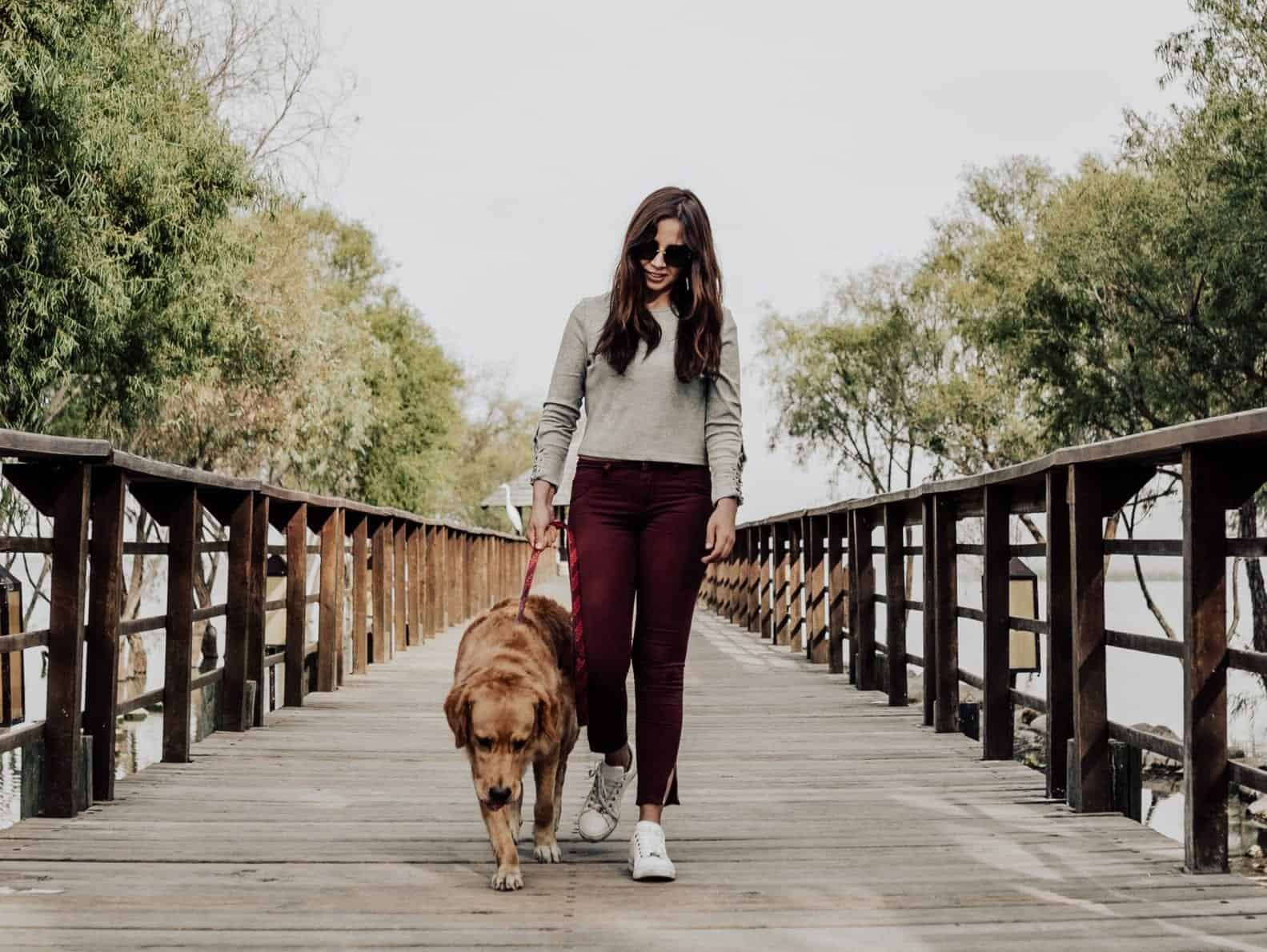 photo-of-woman-walking-on-dock-with-her-dog-2219928-scaled