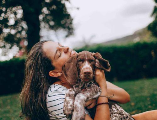 """De-Dogging the Dog""…Stop Limiting Beliefs"