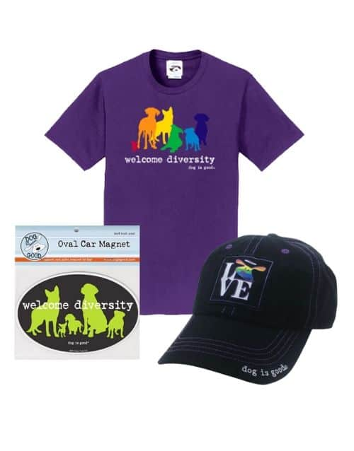 Gift Set: Welcome Diversity Pride