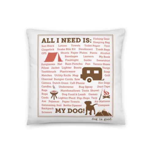 Pillow: All I Need Camping