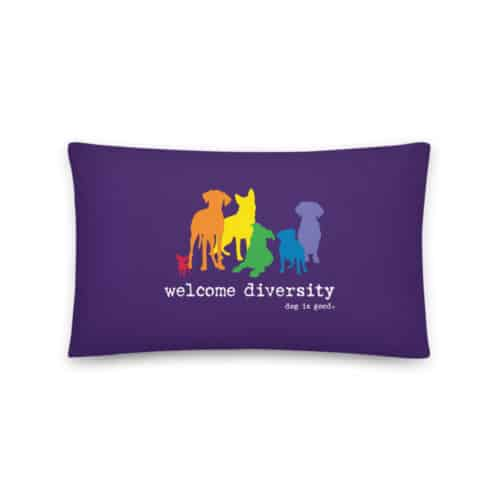 Pillow: Welcome Diversity