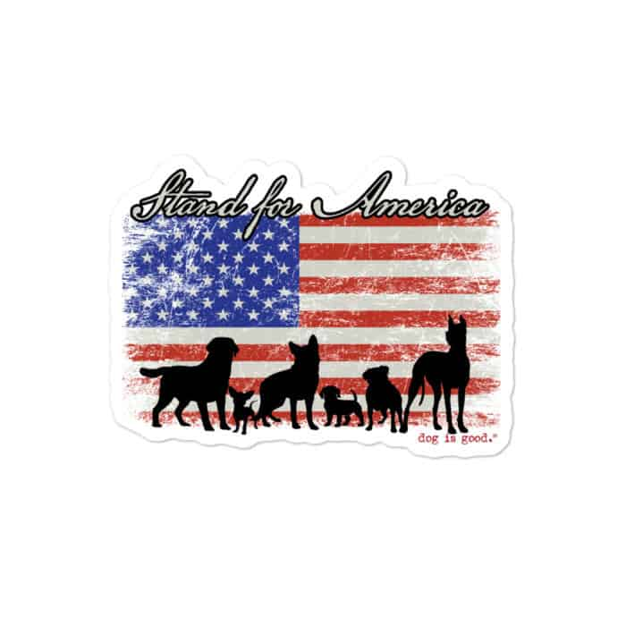 Sticker: Stand for America