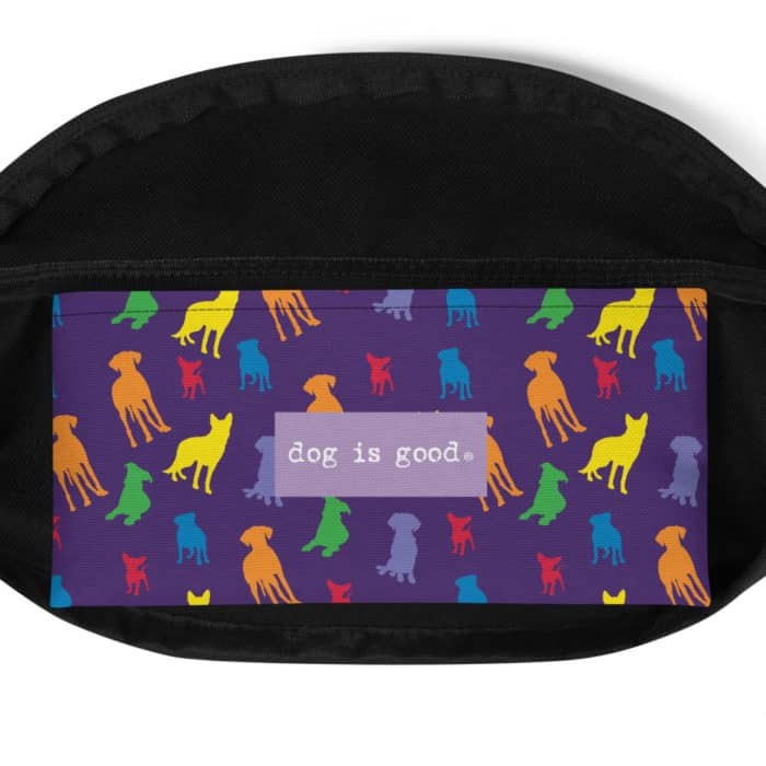 Fanny Pack: Welcome Diversity Pride