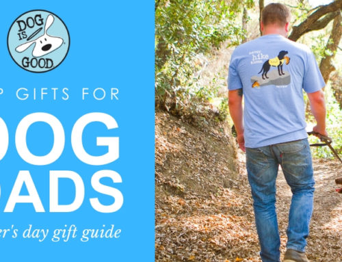 Top Gifts For The Dog Dad