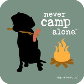 Coaster: Never Camp Alone