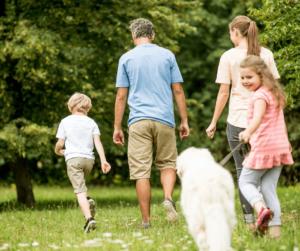 Family dog walking