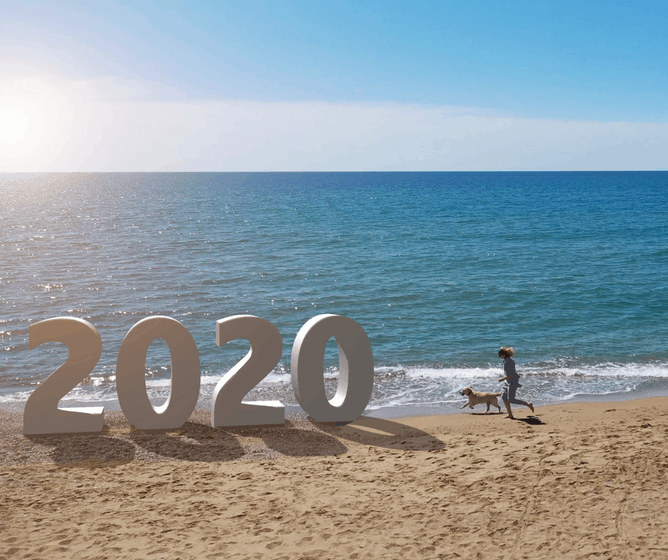 2020 dog and woman on beach
