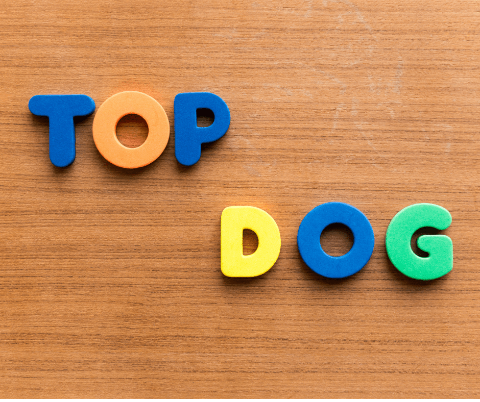 Top dog letters