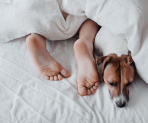 human and dog in bed