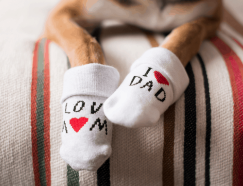 Celebrate Being A Pet Parent