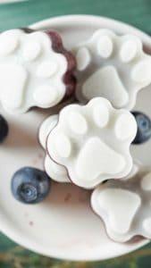 blueberry frozen dog treats