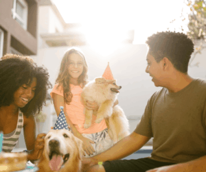 national dog day party